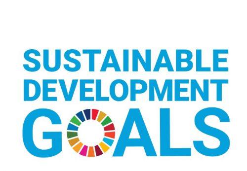 SDGs への取り組み